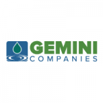 THE GEMINI COMPANIES